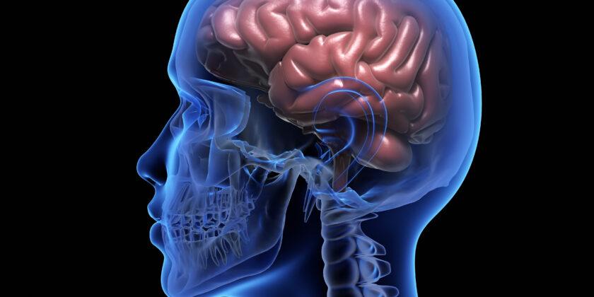 7° Convegno su Cognitività e malattie neurologiche